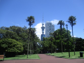 View of the Sky Tower with blue skies background in between the trees in Auckland CBD