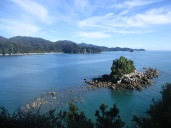 Anchorage Bay from above on a coastal walk along Abel Tasman National Park in New Zealand