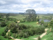 Overlooking the Hobbtion Movie Set in Matamata, New Zealand with the famous party tree in full view