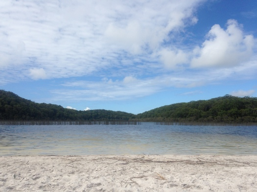The skin healing tea tree waters of Lake Garawongera on Fraser Island surrounded by forests