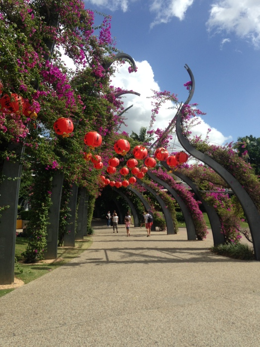 Blue skies over a flower tunnel where purple blossom grows over red Chinese lanterns