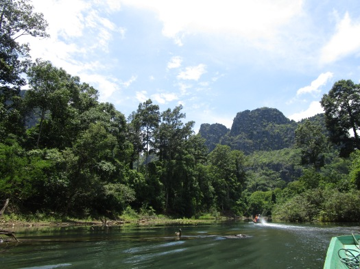 Mountainous and forest views from a boat ride on a sunny day
