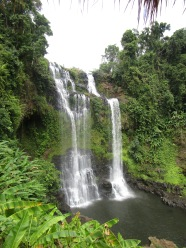 Idyllic tall waterfall surrounded by thick rainforest