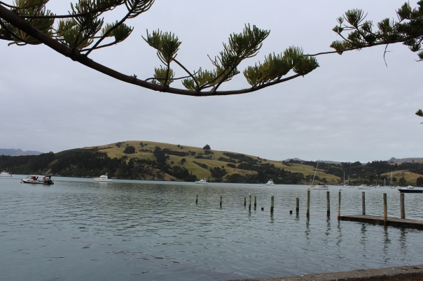 Overcast day overlooking the hills at a bay