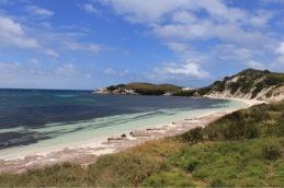 View of beach and sea along grassy coastline